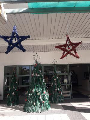 IB Christmas 2